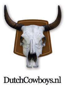 dc_logo-nieuw